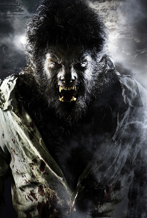 Benicio Del Toro as The Wolfman